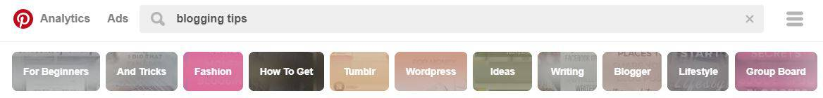 The search bar in Pinterest