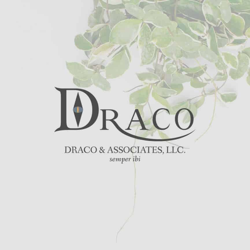 "Logo that says ""Draco and Associates, LLC"""
