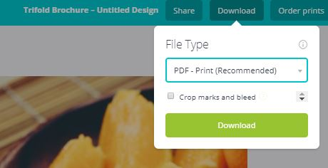 A screenshot to download your PDF on canva