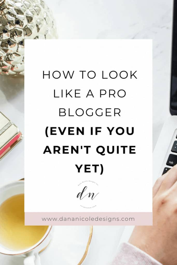 An image with text overlay that says: how to look like a pro blogger even if you aren't quite yet
