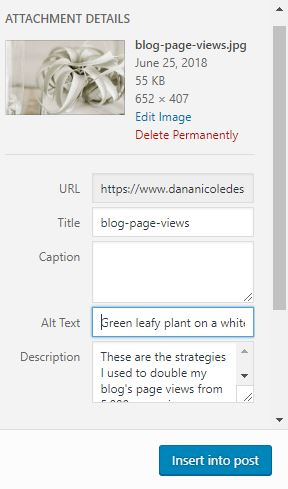 Screenshot of the WordPress interface where you can add Alt text