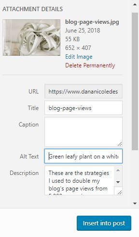 Screenshot of the WordPress interface where you can add Alt text