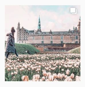 A girl walking through a field of pink flowers with castle in the background