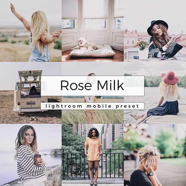 Lightroom Mobile Preset Rose Milk