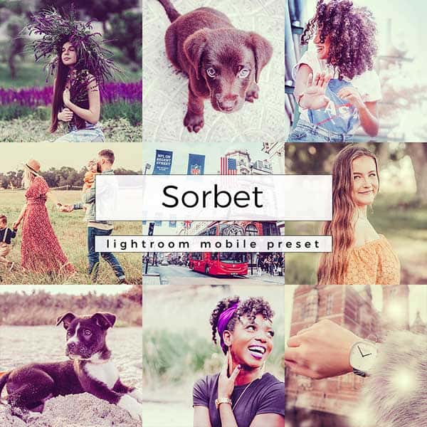 A grid of photos with text overlay