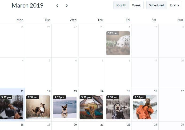 A screenshot of a calendar to schedule your instagram posts