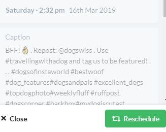 A screenshot of HopperHQ's caption editor