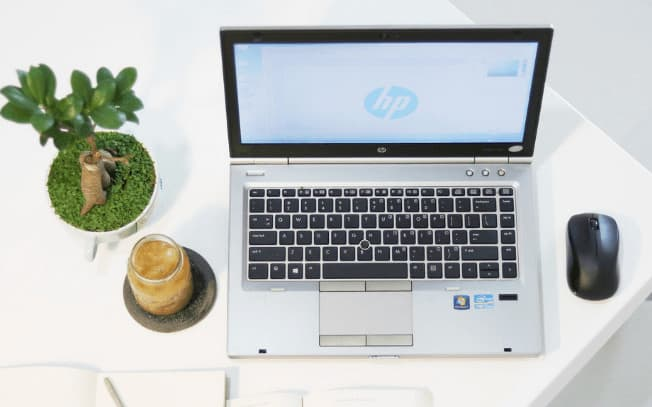 Laptop and plant on desk