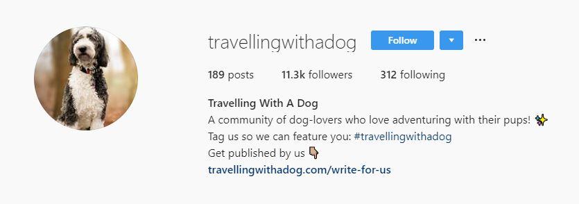 screenshot of instagram bio