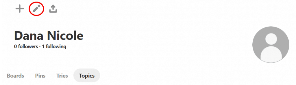 Screenshot showing a Pinterest profile