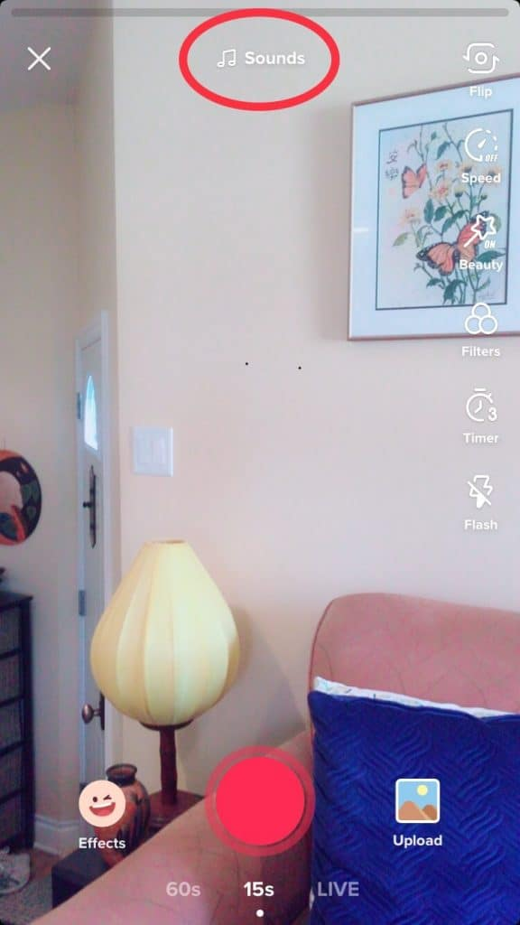 A TikTok video being filmed is screenshotted