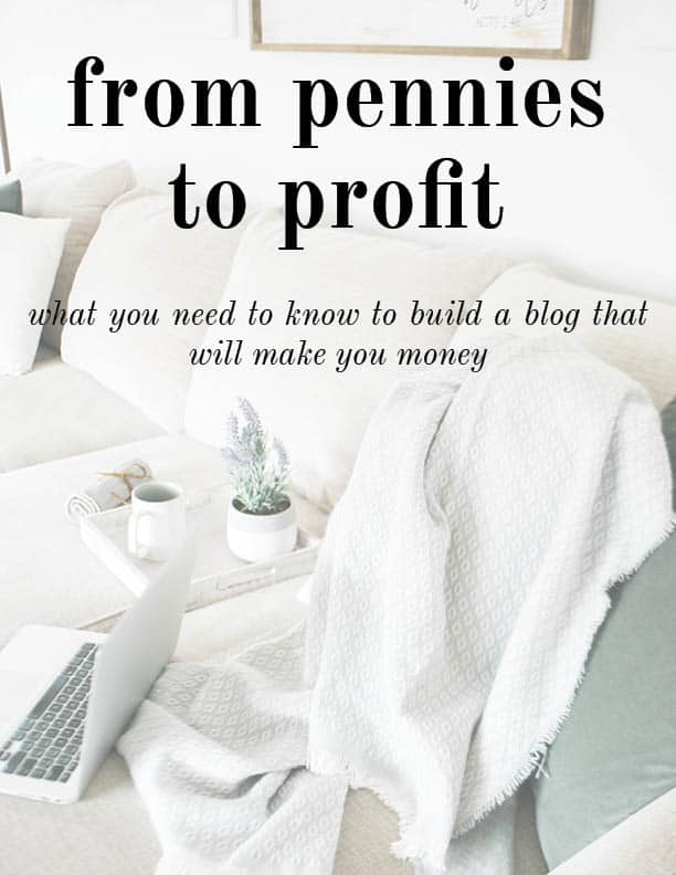 ebook cover: from pennies to profit. what you need to know to build a blog that will make you money